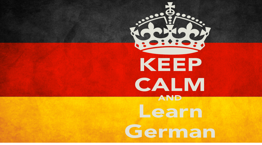 Aleman profesional 1