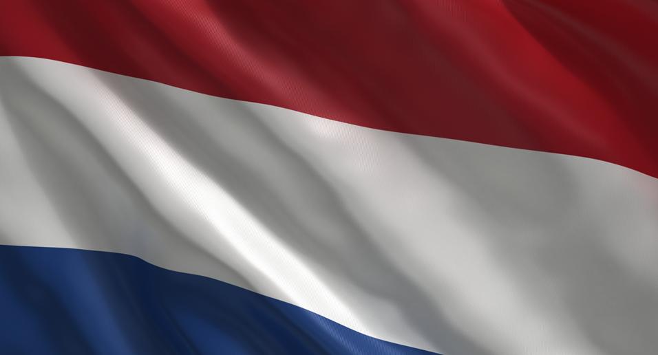 Holandes basico