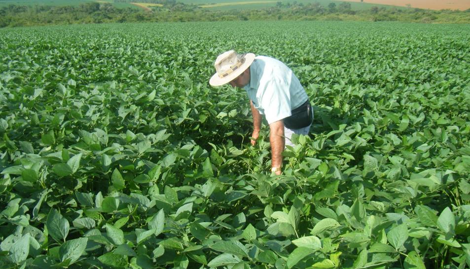 Trazabilidad sector agrario