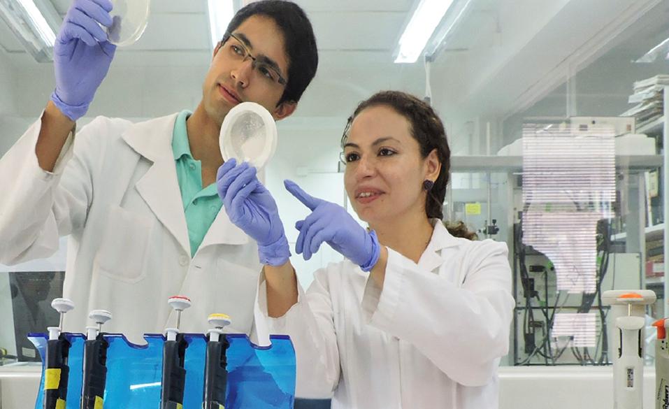 Bioingenieria -Diseño