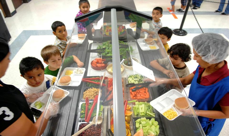 Nutrición en Educación Primaria