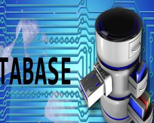 Gestores de Datos y de la Información